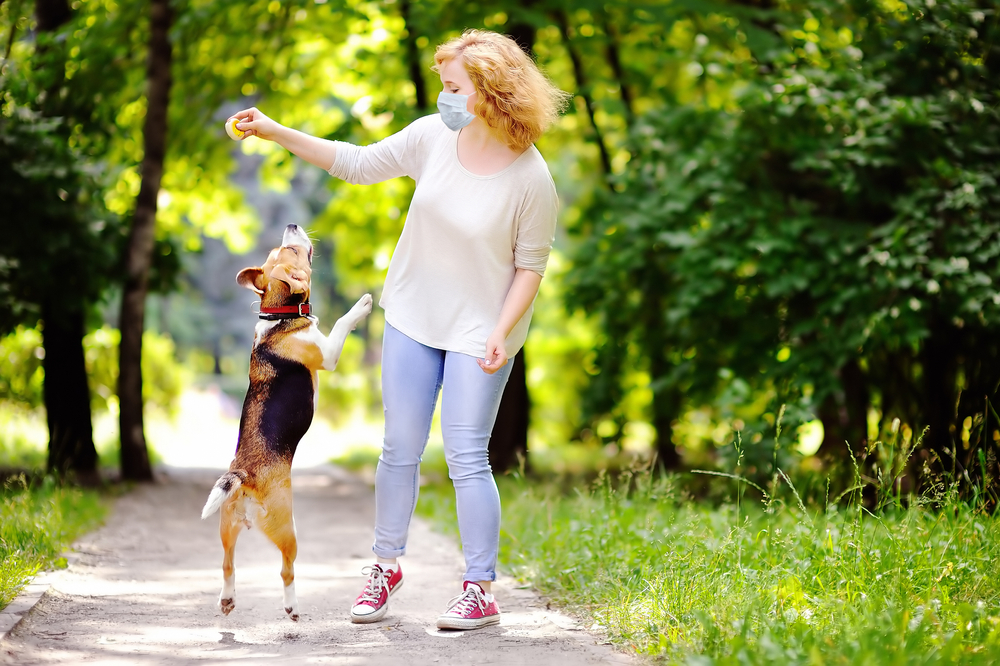 dog and owner playing outside in the spring
